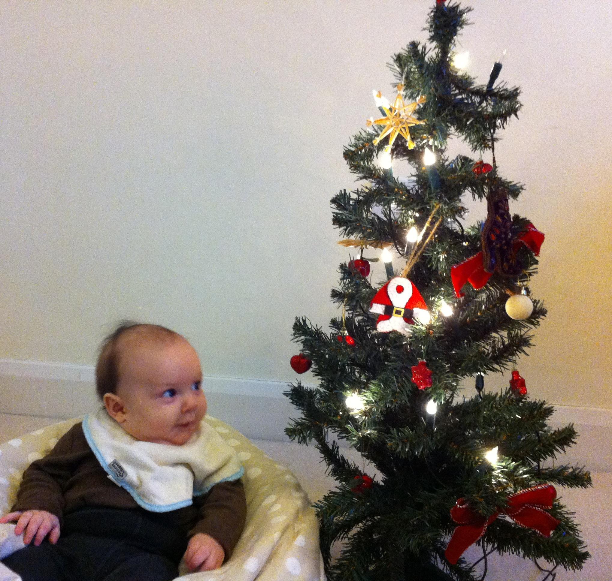 Schobel wir haben einen weihnachtsbaum